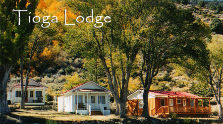 Tioga Lodge